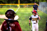2012-07-06 Pelham Travel Baseball-1811