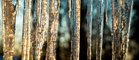 2014-02-14 icicles-3141